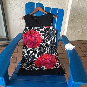 Jones NY Dress in Size 12